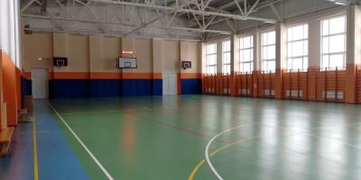 Школа в Шушарах, спортивный зал