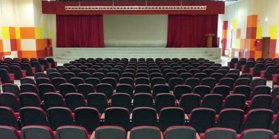 Школа в Шушарах, зрительный зал