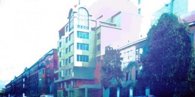 Жилой дом на Боровой улице, 19