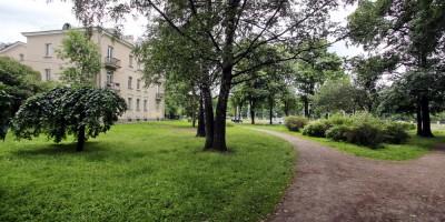Улица Савушкина, Гутовский сквер, деревья