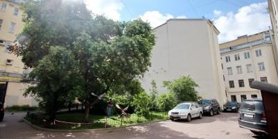 Сквер в Кузнечном переулке, 7, голуби