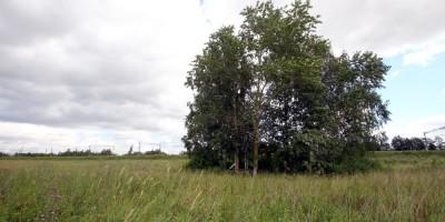Пулковское шоссе, мемориал упавшему самолету Ил-18