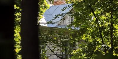 Пушкин, дом Данини на Павловском шоссе, фронтон