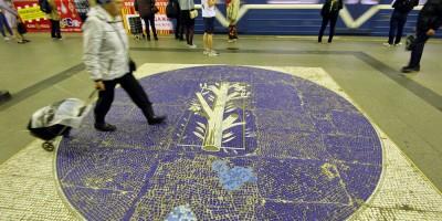 Станция метро Озерки, панно на полу