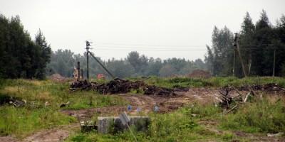 Усть-Ижорское шоссе, вырубка