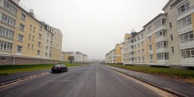Пушкин, Камероновская улица