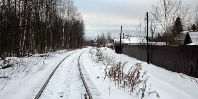 Парголово, железная дорога у садоводства Левашово