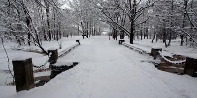 Сестрорецк, Голландский сад, мост