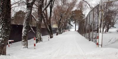 Сестрорецк, Санаторная улица