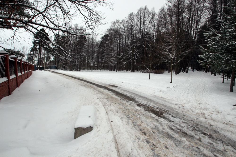 Сестрорецк, Парковая улица