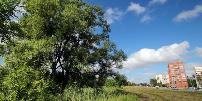 Муринский парк, проспект Луначарского