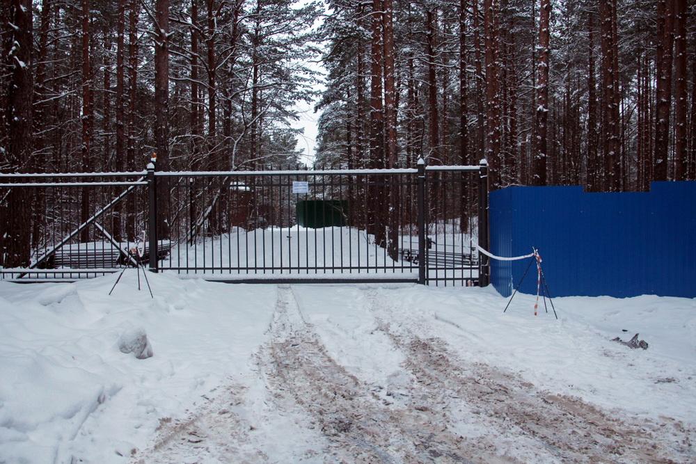 Сестрорецк, Томинская улица, ворота
