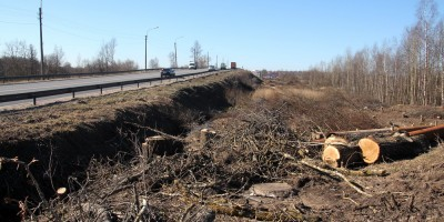 Гореловский путепровод, вырубили деревья