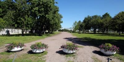 Сад на Неве, клумбы
