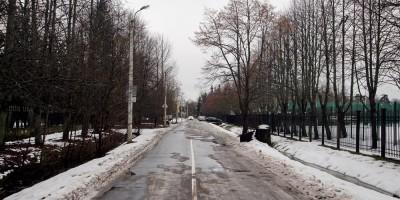 Сестрорецк, улица Михаила Зощенко
