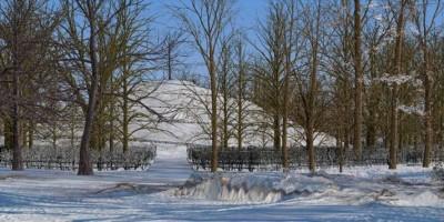 Александровский парк, Парнас, проект, вид снизу