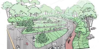 Проект парка на Камышовой