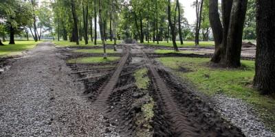 Петровский парк, грязюка