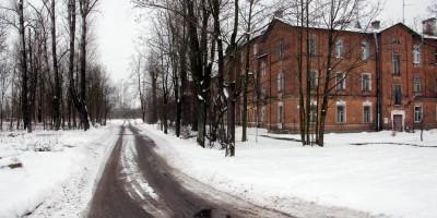 Понтонный, Череповецкая улица