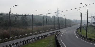 Волхонское шоссе, лес