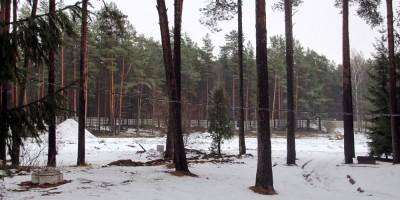 Сестрорецк, после сноса корпусов Сестрорецкого курорта