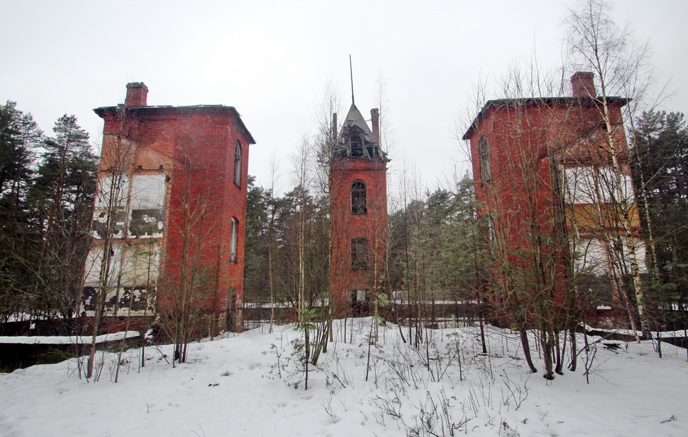 Сестрорецк, руины Лесного пансионата