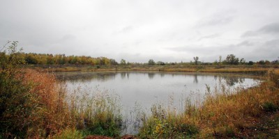 Пулковское шоссе, пруд