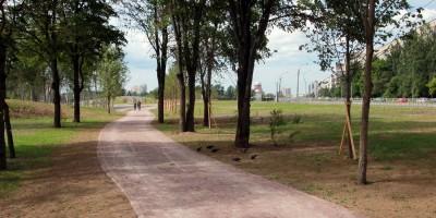 Муринский парк, дорожка
