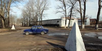 Детскосельский, Муромская улица, совхоз