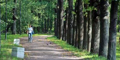 Колпино, Колпинский парк, аллея