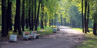 Колпино, Колпинский парк, дорожка