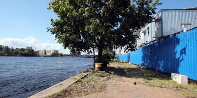 Малая Нева, берег