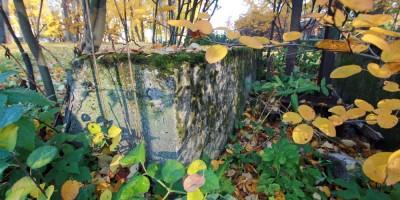 Каменный остров, бетонный блок в кустах