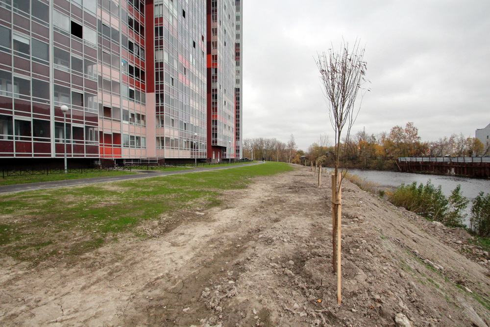 Охта, набережная у проспекта Энергетиков, деревья
