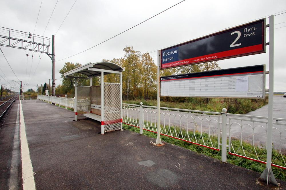 Станция Лесное