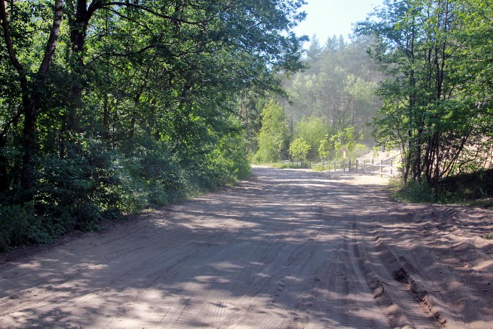 Сестрорецк, дорога вдоль Ржавой канавы