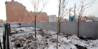 Угол Тележной и Кременчугской улиц, деревья