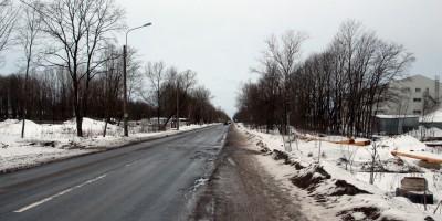 Красное Село, улица Свободы