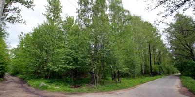 Лисий Нос, Зеленый проспект