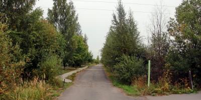 Пушкин, Биологическая улица