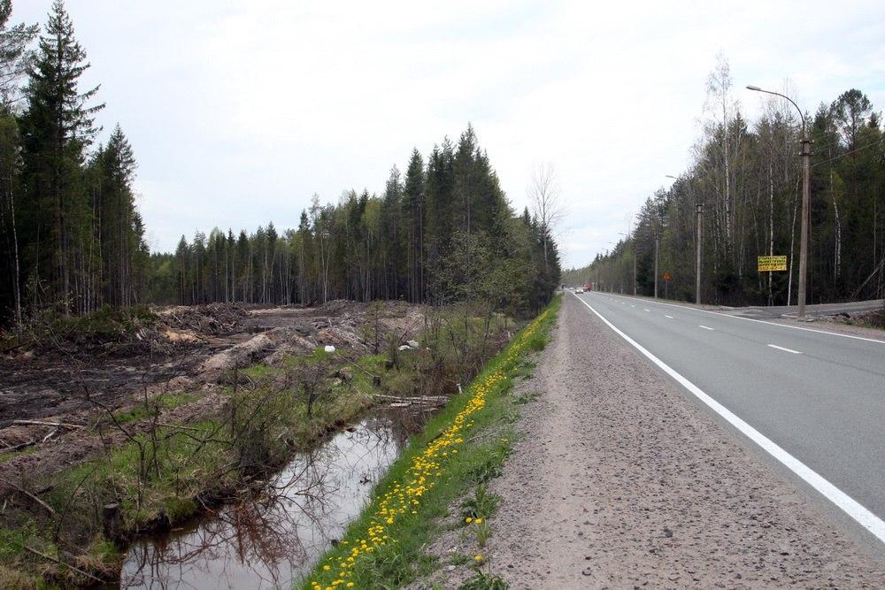 Белоостровское шоссе