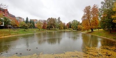 Парк усадьбы Орловых-Денисовых, Графский пруд