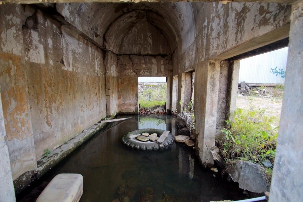Митрофаньевское шоссе, склеп Митрофаньевского кладбища внутри