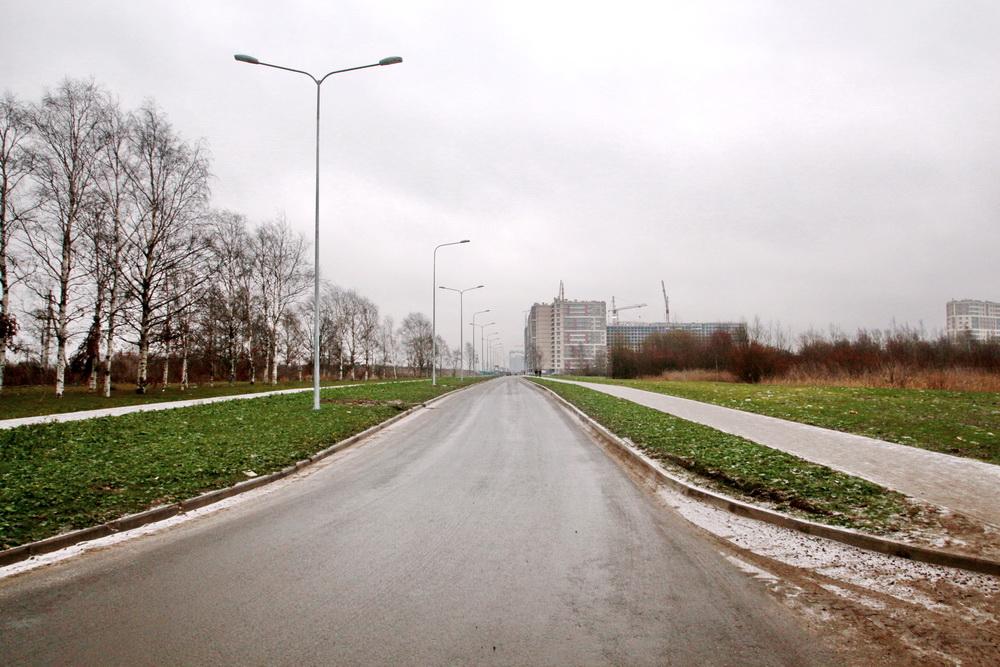 Идрицкая улица