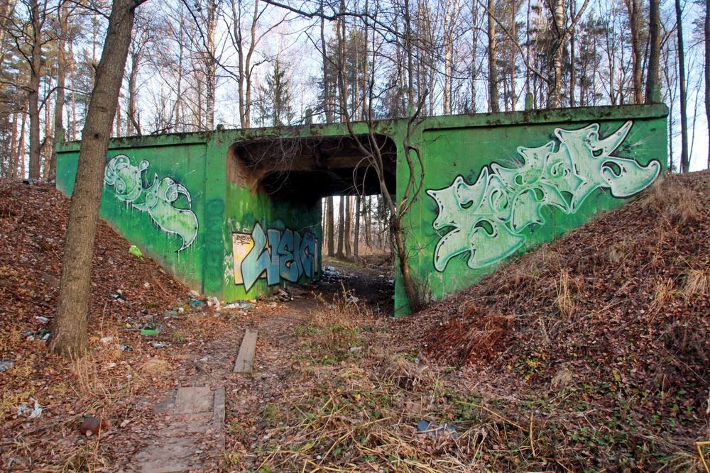 Ломоносов, путепровод, мост Оранэлы на улице Шишкина