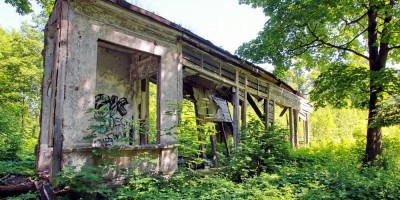 Парголово, дворец усадьбы Осиновая Рощина, галерея