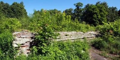Парголово, дворец усадьбы Осиновая Рощина, лестница