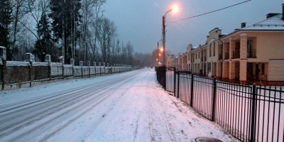 Репино, Гулинская улица