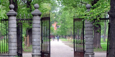 Выборгский сад и ограда