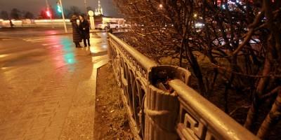 Кронверкская набережная, решетка Александровского парка без топоров